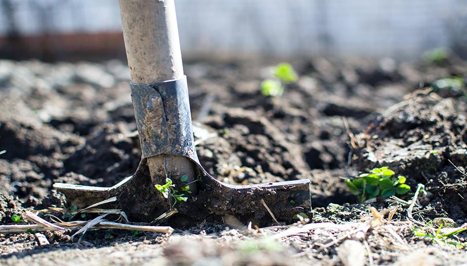 Shovel in Garden | Hobbies | Benefits by Design