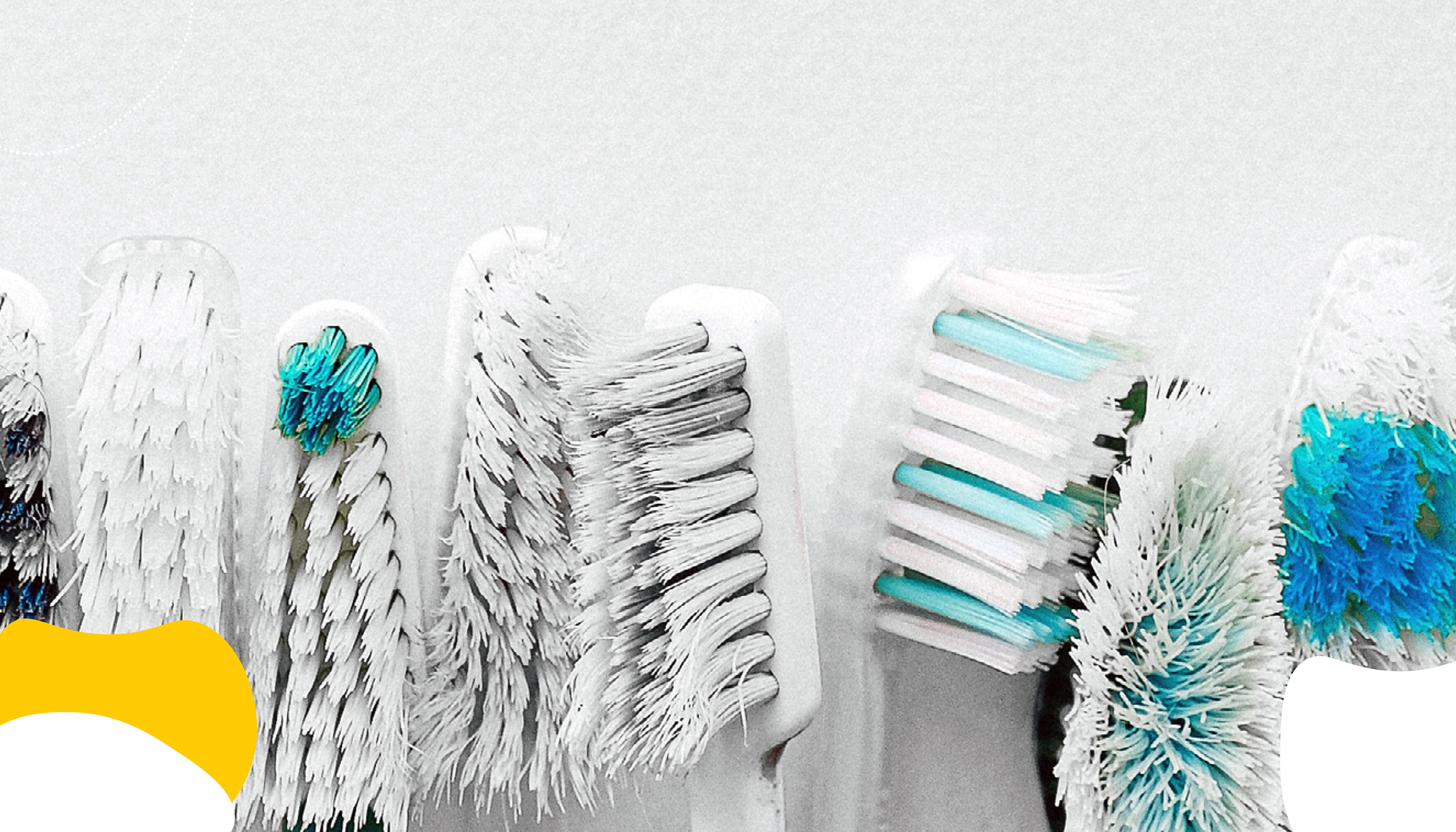 Toothbrushes lined up in a row | Dental Insurance | Benefits by Design