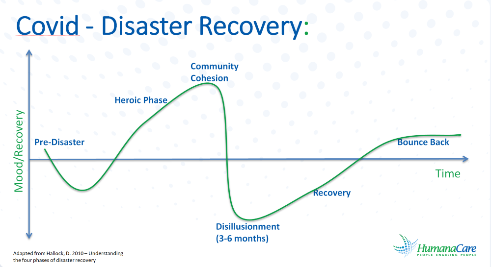 Covid — Disaster Recovery Chart